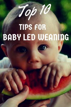 Baby led weaning tips ... want to try baby led weaning but not a clue where to start, check out these top 10 tips ...