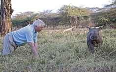 The legendary Sir David Attenborough recently hosted a question and answer round for his new series entitled 'Africa'. Click for his answers. #Africa