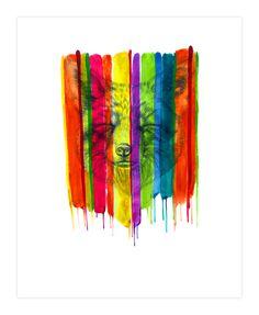 Colorful Fox Art Print