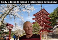 Very Funny Memes, True Memes, Polish Memes, Best Memes Ever, Smile Everyday, I Cant Even, Cringe, Haha, I Am Awesome