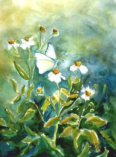 butterfly and daisy painting - Google Search
