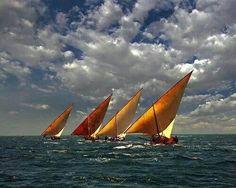 The Art of Swahili Dhow Racing I - Lamu Archipelago, Kenya Full Sail, Sail Away, Set Sail, Sunset Photography, Tall Ships, Nature Animals, Archipelago, Sailing Ships, Sailing Boat