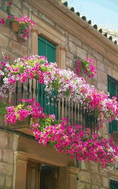 Blooming balconies in New Orleans.