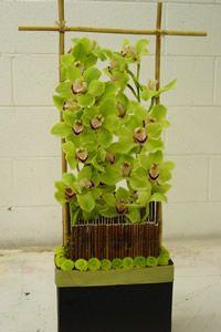 cool orchid arrangement