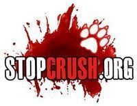 "Make Animal ""Crush"" Videos a Federal Crime - sign the petition here: The Petition Site: http://www.thepetitionsite.com/921/217/762/make-animal-crush-videos-a-federal-crime/   (there are no graphic images on that page, just text and a place for you to sign the petition)"