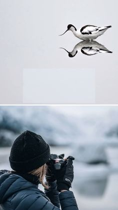 Bird Photography in winter is not for the faint of heart. Bird and wildlife photographers who stake out their position and patiently wait for the shot for hours on end surely are some of the hardiest photographers in the game but those who are willing to wait it out are usually rewarded with images that not every photographer can get. To get a good shot, you need the warmest of gear so you can wait for your moment in comfort. Here are our best recommendations. Photography Gloves, Winter Photography, Photography Tutorials, Photography Tips, Best Gloves, Migratory Birds, Take Better Photos, Wild Birds, Shutter Speed