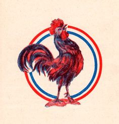 the Gailic rooster is the symbol of France; originally the symbol of the Gauls it became the symbol of the francs and then symbol of french pride (Nicolas) Art Mur, France Flag, Bastille Day, Coffee Logo, Flag Design, Learn French, Art Projects, Canvas Art, Symbols