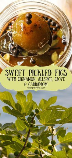Sweet Pickled Figs