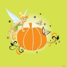 Disney Fairies:)