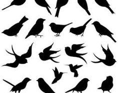 british bird silhouettes - Google Search