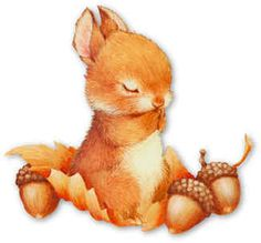 Marlucia Motta - Álbumes web de Picasa animales ilustrados