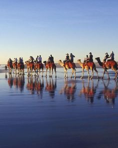 """See the """"Best Sunsets: Cable Beach, Broome, Western Australia"""" in our 50 Best Beach Honeymoons gallery"""