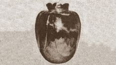 """Basano Vase or Vase of Death created in the 15th century. A note found inside read """"Beware, this vase brings death."""" Given as a wedding gift to a woman in Napoli Italy, she was murdered before making it to the altar. Anyone who has possessed the vase has perished: A pharmacist & archaeologist each died within 3 months. The next owner died within a month. Everyone who knows about the vase have refused to put the vase on display. It was taken away and no one knows where it is kept."""