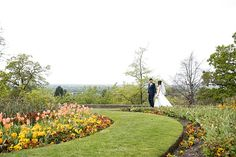 Surrey wedding photographer / A pretty wedding at Pembroke Lodge - Fiona Kelly Wedding Locations, Wedding Venues, Pembroke Lodge, Richmond Park, Lodge Wedding, Pink Tulips, Beautiful Places In The World, Surrey, Pansies