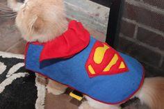 Superman pet coat by missfit1023