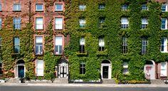 Georgian Houses in Dublin, Ireland.