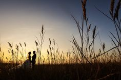 Wedding photography - Avatar Studio