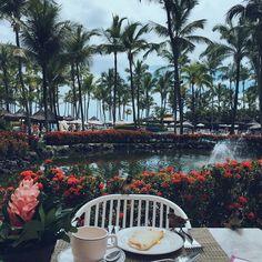 | Breakfast  | Bom dia com meus amigos passarinhos que posaram pra foto e pra começar o café da manhã, uma tapioca! Tô no paraíso. ❤️ #Nahilha #TransamericaComandatuba