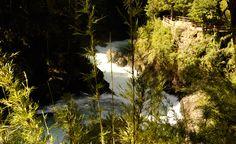 Circuito Cascada los Alerces No es novedad que el parque nacional Nahuel Huapi presenta un sinfín de paisajes y rincones naturales bellísimos. Claro que la cascada de Los Alerces es uno de esos puntos que no puede dejar de visitarse.