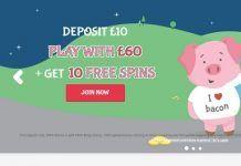 Oink Bingo Review – Up To 500% Welcome Bonus
