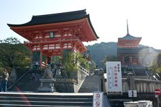 With over 1600 different temples in Kyoto, deciding which to see is hard. Here are my hits and misses when temple hopping in Kyoto.