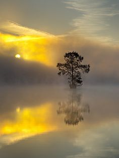 misty sunrise reflected on lake