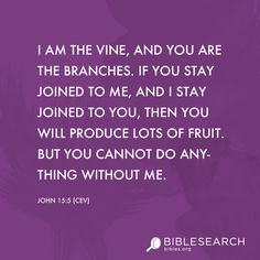 I am the vine, and you are the branches. If you stay joined to me, and I stay joined to you, then you will produce lots of fruit. But you cannot do anything without me.  John 15:5 [CEV]  bibles.org/...