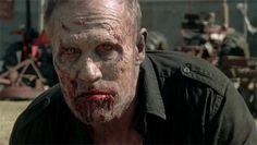 Merle ;-;