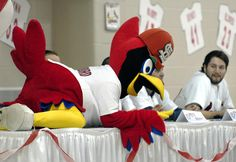Fredbird makes himself comfortable on the table in front of St. Louis Cardinals players including Lance Lynn Monday evening, January 16, 2012 at the Osage Centre in Cape Girardeau, Missouri (LAURA SIMON)