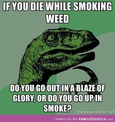 Die smoking weed