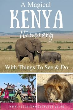 A Magical Kenya Itinerary with Things To See & Do Kenya Travel, Africa Travel, Mount Kenya, The Great Migration, Kenya Africa, 17th Century Art, Adventure Tours, Luxor Egypt, British Museum