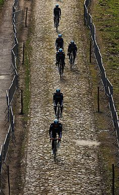 Wallers, France; cycling team ride over the cobbles of the Arenberg forest while training by Bryn Lennon