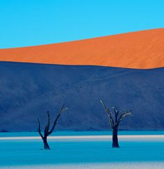 Deadvlei, Namibia. You almost wouldn't believe that this lesser known, less travelled destination is even real. But it is. And I'm so going.