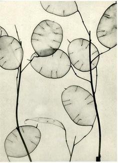 Willy Zielke(German, 1902-1989)  Composition #103 1930  photogravure