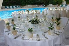 Κωδ.33 Στολισμός δεξίωσης γάμου με συνθέσεις σε γυάλα από λευκά τριαντάφυλλα , ελιά και δελφινιουμ και όμορφες μπομπονιέρες ελίτσες σε κεραμικό