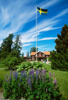 An old estate, Dalarna, Sweden. My mom's family is from this province. Swedish Girls, Swedish Style, The Beautiful Country, Beautiful Places, Scandinavian Cabin, Kingdom Of Sweden, About Sweden, Scandinavian Countries, Sweden Travel