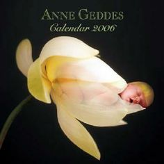 photographer babies in flowers | ... to me that someone I hate is working with photographer Anne Geddes