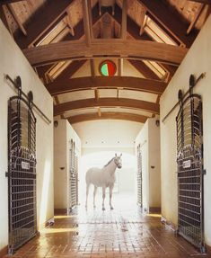 The beauty of Kentucky is evident in these Pieter Estersohn photographs from his new book Kentucky. Some of the most beautiful in the book to my eye are from the Gainesway Farm. Here, Estersohn's powers are evident as he captures Gainesway's thoroughbreds, stables, and landscapes. Pieter Estersohn photographer.