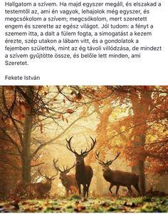 Moose Art, Poems, Motivation, Heart, Quotes, Decor, Qoutes, Dekoration, Decoration