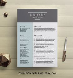 Modern Resume Template For Word Lindsay   Editable