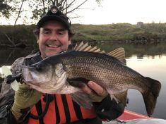 Australian Bass, Sports, Hs Sports, Sport