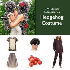 Inspiration & accessories for your DIY Hedgehog halloween costume Idea Family Costumes, Group Costumes, Diy Halloween Costumes, Costume Ideas, Animal Costumes, Diy Makeup, Diy Tutorial, Hedgehog, Inspiration