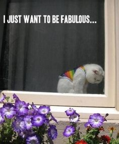 I just want to be fabulous