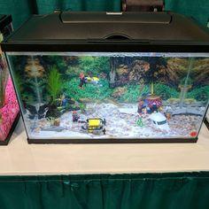 Kids contest Lego aquascape. #aquascape  #aquascaping #aquariumcoop