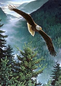 The Eagle He clasps the crag with crooked hands; Close to the sun in lonely lands, Ringed with the azure world he stands. The wrinkled sea beneath him crawls; He watches from his mountain walls, And like a thunderbolt he falls.  Alfred Lord Tennyson