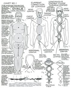 "lucifelle: Polarity Therapy  Charts 1-10 ""The Wireless Anatomy of Man"