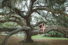 Phillipe Park in Safety Harbor, FL Engagement Session - Photo by Darin Crofton Photography - Click pin to see more - www.orangeblossombride.com