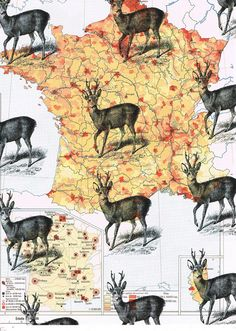 DEER.Collage.Map Page by studioflowerpower on Etsy