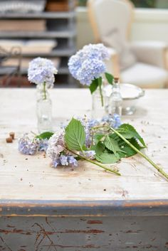 these hydrangeas look so delicate in the small bottles
