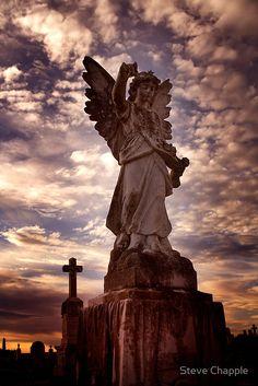 Waverley Cemetery Australia